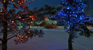 Christmas in Spruce Grove's Central Park | Spruce Grove Stony Plain Parkland County Real Estate | Barry Twynam